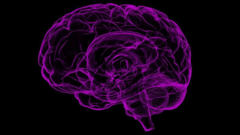 Promenader räddar din hjärna